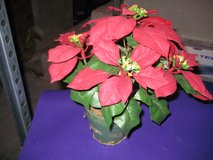 Small Artificial Poinsettia in Ramstein, Germany